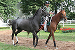 Favorite Awesome Maria with John Velazquez aboard win the 43rd running of the Grade 1 Ogden Phipps Handicap under 122lbs, for fillies and mares 3 year olds & up, at 1 1/16 at Belmont. Trainer Todd Pletcher. Owner E. Paul Robsham Stables LLC.