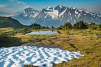 Chugach National Forest, Kenai Peninsula, Alaska.