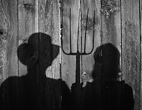 Shadows of couple hold shovel and hoe cast on wooden fence in backyard  in their home.