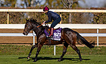 November 3, 2020: Ubettabelieveit, trained by trainer Nigel Tinkler, exercises in preparation for the Breeders' Cup Juvenile Turf Sprint at  Keeneland Racetrack in Lexington, Kentucky on November 3, 2020. Alex Evers/Eclipse Sportswire/Breeders Cup