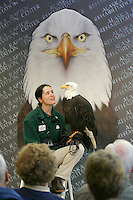 Melissa Wentzell gives a presentation at the Alaska Raptor Center. The center provides medical treatment to injured bald eagles and other birds. The 17-acre campus borders the Tongass National Forest, a temperate coastal rainforest, and the Indian River in Sitka, Alaska.
