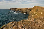 Cliffs close to Padstow in North Cornwall.