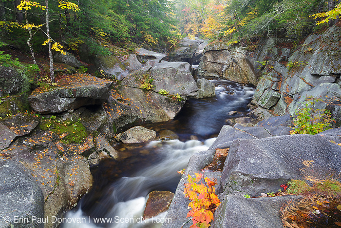 Agassiz Basin, on Mossilauke Brook, in North Woodstock, New Hampshire on a foggy autumn day. Agassiz Basin is named for Swiss naturalist, Louis Agassiz (1807-1873), who visited the region while doing research in the 1800s.