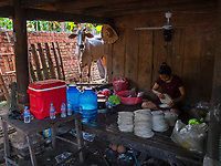 Traditional Rice paper production along the rural roads near Battambang is usually done by local families, Battambang. Rice paper is used for making the famous and delicious spring rolls. The family cow is looking on as a women prepares the packing of rice paper