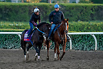 October 28, 2019 : Breeders' Cup Sprint entrant Mitole, trained by Steven M. Asmussen, exercises in preparation for the Breeders' Cup World Championships at Santa Anita Park in Arcadia, California on October 28, 2019. John Voorhees/Eclipse Sportswire/Breeders' Cup/CSM