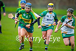 Kerry's Norette Casey and Louise O'Donoghue of Meath race for possession, in the Camogie Intermediate Championship