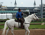 LOUISVILLE, KY - APRIL 23: Trainer Steve Hobby on his track pony, a retired 22 year old Thoroughbred named Chindi. Chindi (El Prado x Rousing, by Alydar) was a multiple graded stakes winner and made over $1 million in earnings in his career. (Photo by Mary M. Meek/Eclipse Sportswire/Getty Images)
