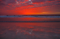 Afterglow, Asilomar Beach, Pacific Grove