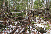 Pile of bed frames at logging Camp 12 along the abandoned Beebe River Railroad (1917-1942) in Waterville Valley, New Hampshire. These bed frames are protected artifacts of the White Mountains logging era, and the removal of historical artifacts from federal lands without a permit is a violation of federal law.