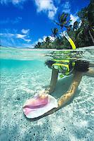Split level of a snorkeler<br /> with an empty conch shell<br /> St. John<br /> U.S. Virgin Islands