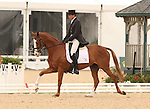 22 April 2010.  Neville Bardos and Boyd Martin finish with a score of 51.8 on the first day of the Dressage test at the Rolex Three Day Event in Lexington, KY.