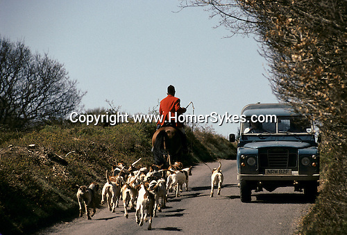 Quantock Staghounds 1990s Uk. Quantock Hills Somerset and Exmoor Devon  Master of the Hounds MFH with pack of hinds  out hunting 1997 UK