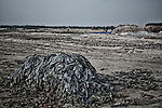 An illegal leather scrap dumping yard located few meters away from Ganges in Kanpu. The chromium contaminated scraps are burnt to dust to produce raw materials for fertilizers and chicken food. Kanpur, Uttar Pradesh, India. Arindam Mukherjee