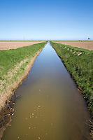 Drainage dyke - May, South Lincolnshire