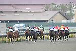 24 July 2009: Horses head down the stretch at Del Mar Race Track, Del Mar, CA