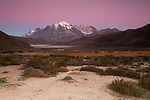 Mountain range and pre-andean shrubland at sunrise, Torres del Paine National Park, Patagonia, Chile