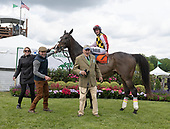 4th Willowdale Steeplechase timber stakes - Renegade River