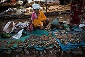 A vendor selling dried fish in a local village market in Londigura, Chhattisgarh, India. Photo: Sanjit Das/Panos for The Times