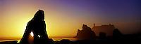 Panoramic of sunset silhouetting seastacks at Ruby Beach, Olympic National Park, Washington State