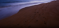 Waves wash over the beach erasing footprints just before sunrise