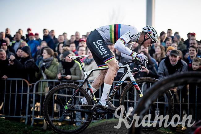 Mathieu van der Poel (NED/Corendon-Circus)<br /> <br /> Azencross Loenhout 2019 (BEL)<br />  <br /> ©kramon