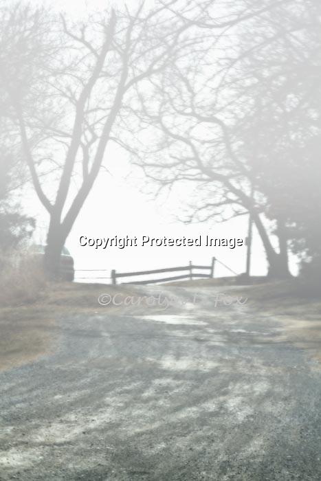 Fog settles over a path leading towards a fence.