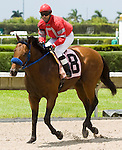 10 July 2010: Safety Squeeze and Jockey Daniel Coa after the Bob Umphrey Turf Sprint Handicap at Calder Race Course in Miami Gardens, FL.