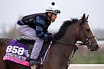 October 28, 2015:  Last Waltz (IRE), trained by Chad C. Brown and owned by Swift Thoroughbreds, Bradley Thoroughbreds, Head of Plains Partners LLC, exercises in preparation for the Breeders' Cup Juvenile Fillies Turf at Keeneland Race Track in Lexington, Kentucky on October 28, 2015. Jon Durr/ESW/CSM