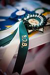esposizione canina internazionale di sassari e chiaramonti 16-17 febbraio 2013