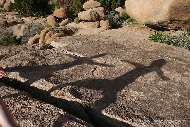 Shadows of people doing yoga at Joshua Tree National Park, California