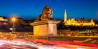 Szechenyi Chain bridge's iconic stone lion statues and Matthias Church, at twilight, with beautiful light trails from car traffic, Budapest Hungary