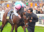 Frankel? (no. 3), ridden by Thomas Queally and trained by Sir Henry Cecil, wins the group 1 Champion Stakes for three year olds and upward on October 20, 2012 at Ascot Racecourse in Ascot, Berkshire, United Kingdom.  (Bob Mayberger/Eclipse Sportswire)