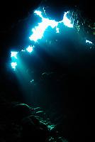 Saint John's Reef, South Red Sea, Egypt, Indian Ocean
