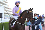 March 27, 2021: MOSS GILL(IRE) #5 in the post parade for the Al Quoz sprint on Dubai World Cup Day, Meydan Racecourse, Dubai, UAE. Shamela Hanley/Eclipse Sportswire/CSM