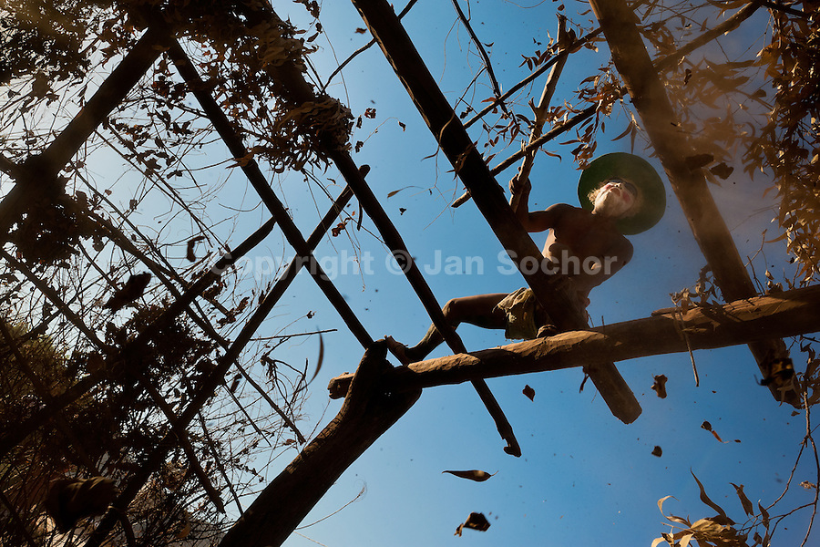 """A Cora Indian man dismantles """"ramada"""", a temporal shack made from branches, at the end of the Semana Santa (Holy Week) celebration in Jesús María, Nayarit, Mexico, 23 April 2011. The annual week-long Easter festivity (called """"La Judea""""), performed in the rugged mountain country of Sierra del Nayar, merges indigenous tradition (agricultural cycle and the regeneration of life worshipping) and animistic beliefs with the Christian dogma. Each year in the spring, the Cora villages are taken over by hundreds of wildly running men. Painted all over their semi-naked bodies, fighting ritual battles with wooden swords and dancing crazily, they perform demons (the evil) that metaphorically chase Jesus Christ, kill him, but finally fail due to his resurrection. La Judea, the Holy Week sacred spectacle, represents the most truthful expression of the Coras' culture, religiosity and identity."""