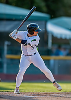 29 August 2019: Vermont Lake Monsters outfielder Shane Selman in action during a game against the Connecticut Tigers at Centennial Field in Burlington, Vermont. The Lake Monsters fell to the Tigers 6-2 in the first game of their NY Penn League double-header.  Mandatory Credit: Ed Wolfstein Photo *** RAW (NEF) Image File Available ***