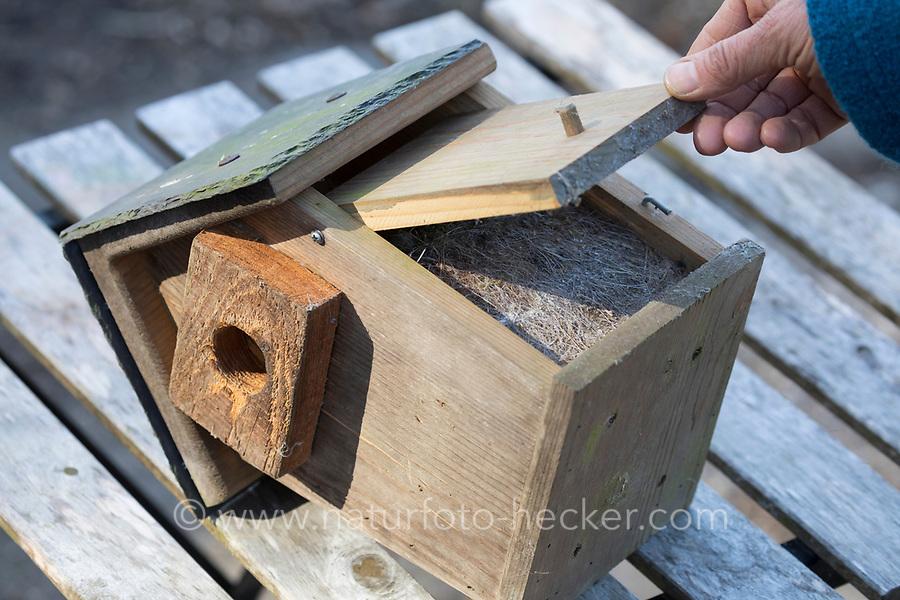 Nistkasten, Vogel-Nistkasten, Vogelkasten säubern, reinigen, Reinigung, Säuberung. Nistkasten ist voll von Nistmaterial