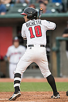 Lansing Lugnuts shortstop Bo Bichette (10) at bat during the Midwest League baseball game against the Bowling Green Hot Rods on June 29, 2017 at Cooley Law School Stadium in Lansing, Michigan. Bowling Green defeated Lansing 11-9 in 10 innings. (Andrew Woolley/Four Seam Images)