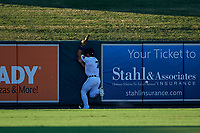 Lakeland Flying Tigers left fielder Brady Policelli (7) crashes into the wall attempting to catch a fly ball during a Florida State League game against the Palm Beach Cardinals on May 22, 2019 at Publix Field at Joker Marchant Stadium in Lakeland, Florida.  Palm Beach defeated Lakeland 8-1.  (Mike Janes/Four Seam Images)