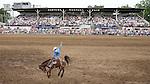2007 Miles City Bucking Horse Sale