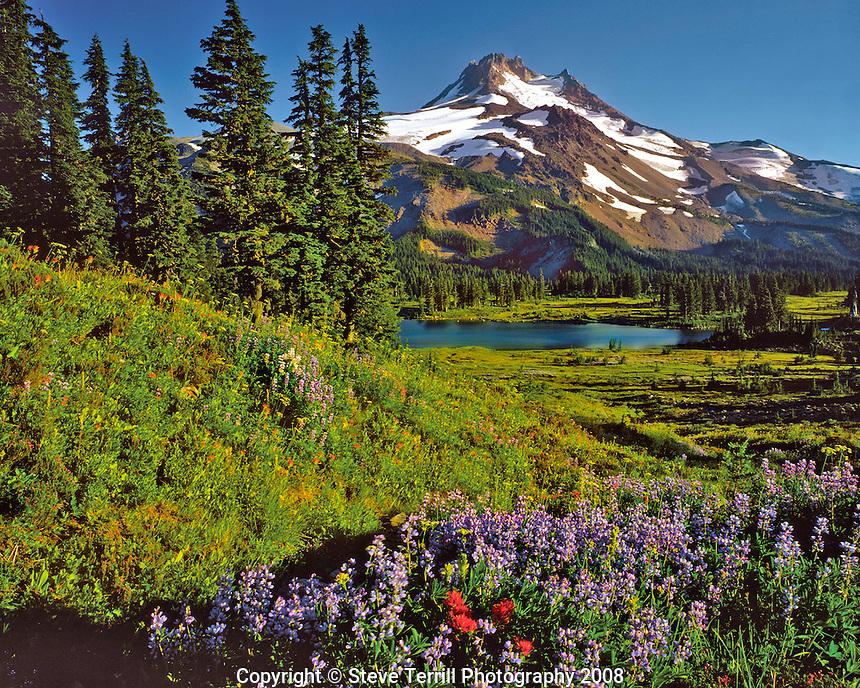 Mt Jefferson in Mt Jefferson Wilderness Oregon