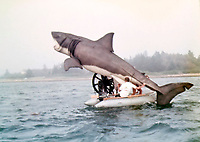 Rare behind-the-scenes photographs taken on the set of the cult movie 'Jaws' have surfaced