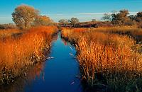 Irrigation ditch Rio Grande watershed.