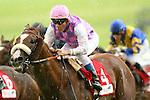 Horse Racing - The Curragh Racecourse - The Irish Field St Leger.The Jeremy Noseda trained Sans Frontieres with Olivier Peslier aboard win the Irish Field St Leger at the Curragh Racecourse.