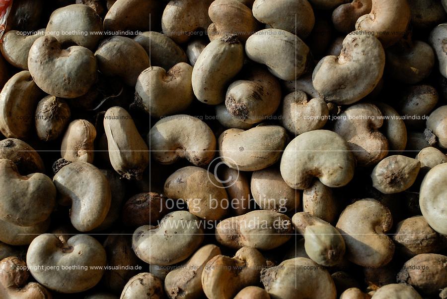 BURKINA FASO, Banfora , Sotria B Sarl factory for cashew nut processing, raw cashew nuts with shell / Fabrik zur Verarbeitung von Kaschunuessen , rohe Kaschu Nuesse mit Schale