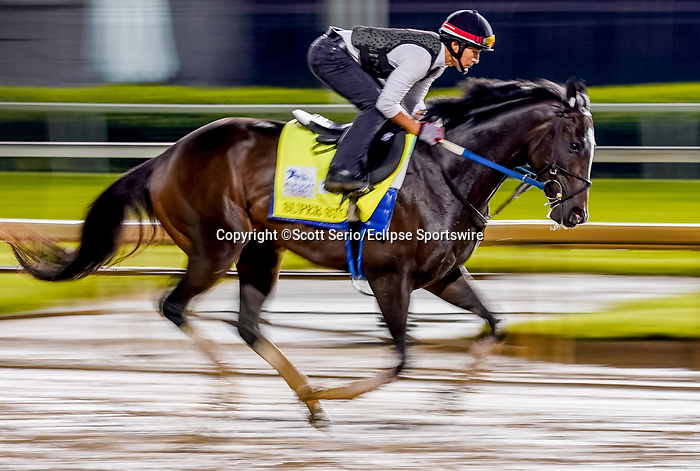 April 29, 2021: Super Stock, trained by trainer Steve Asmussen, exercises in preparation for the Kentucky Derby at Churchill Downs on April 29, 2021 in Louisville, Kentucky. Scott Serio/Eclipse Sportswire/CSM