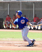 AZL Cubs 2007