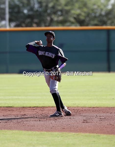 Cristopher Navarro - 2017 AIL Rockies (Bill Mitchell)