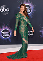 LOS ANGELES, USA. November 25, 2019: Hilary Roberts at the 2019 American Music Awards at the Microsoft Theatre LA Live.<br /> Picture: Paul Smith/Featureflash