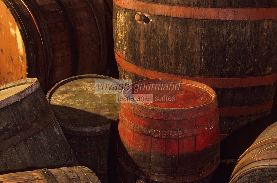 Europe/Croatie/Dalmatie/Primosten:Europe/Croatie/Dalmatie/Primosten: Cave d'un vigneron  du vignoble  de Karst